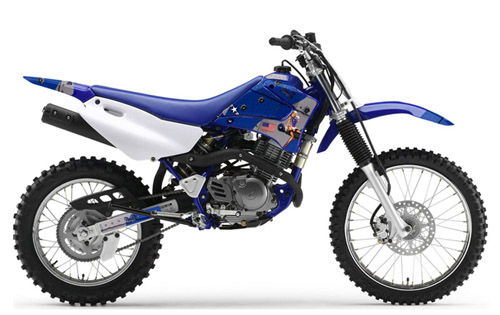 Download Yamaha Ttr-125 repair manual
